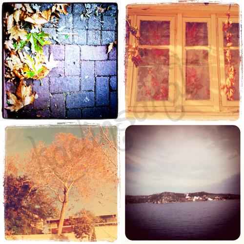 marmara_adasina_giderken